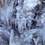 水泉動〜しみずあたたかをふくむ〜 2015年二十四節気七十二候