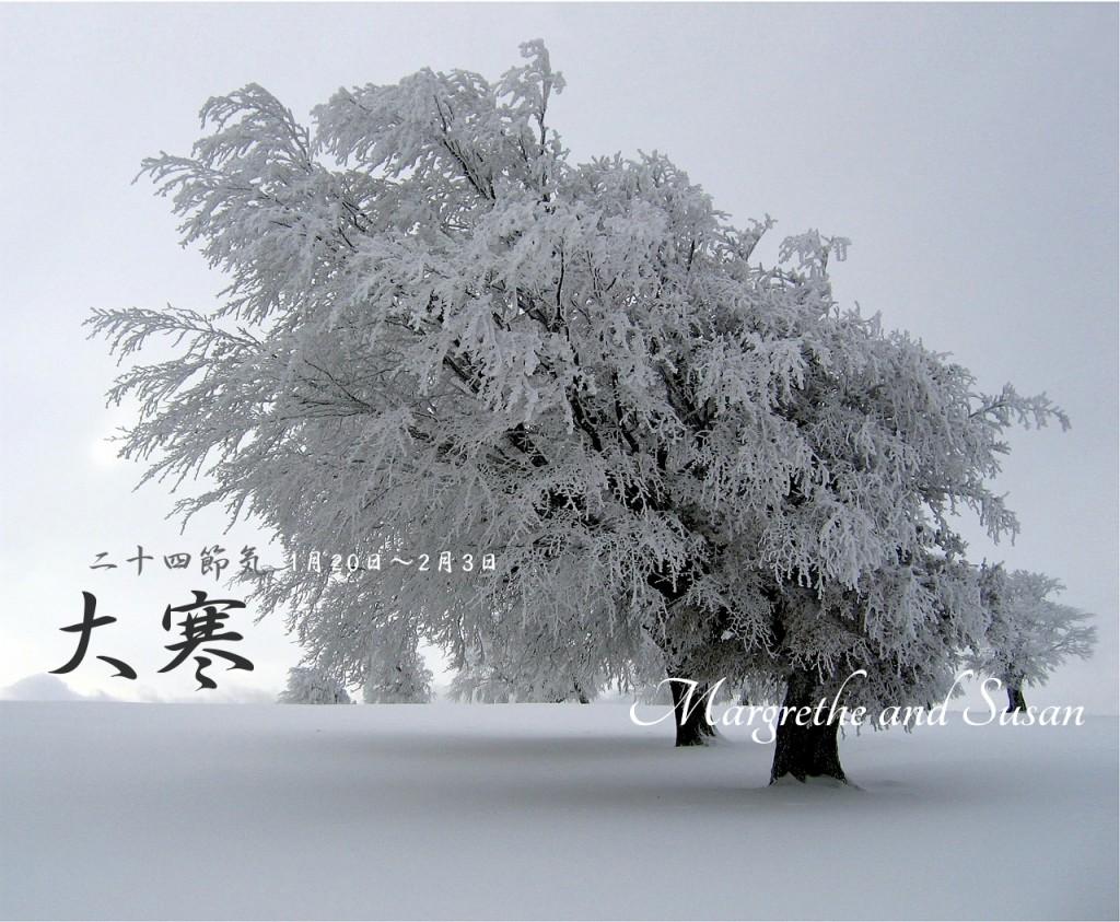 trees-532594_1280_Fotor