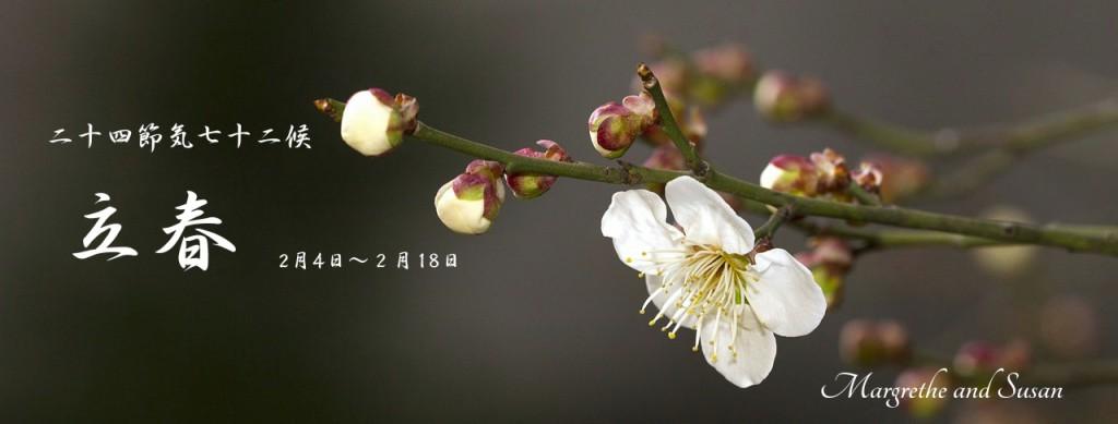 立春HP用_Fotor