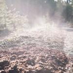 土脉潤起〜つちのしょううるおいおこる  2015年二十四節気七十二候