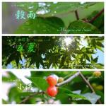 暦カレンダー5月 穀雨・立夏・小満 2015二十四節気七十二候
