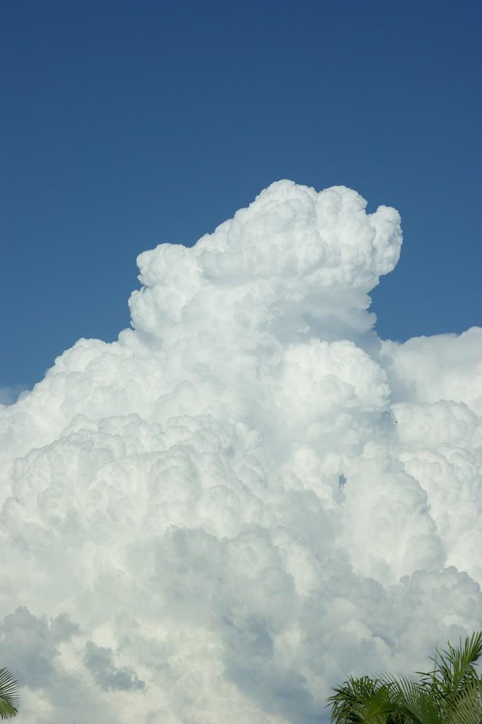 cloud-583925_1280