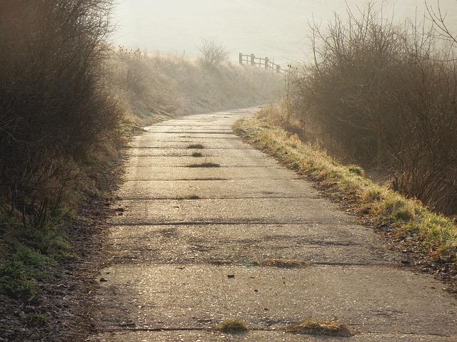 path-930139_640