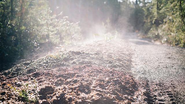 soil-593949_640