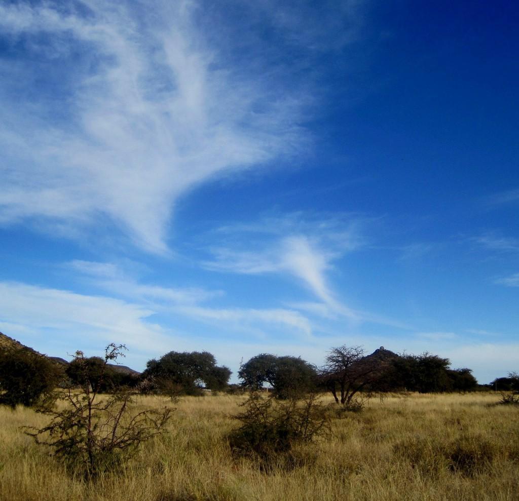 big-blue-sky-185398_1280