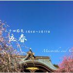 立春(りっしゅん) 2017年二十四節気七十二候
